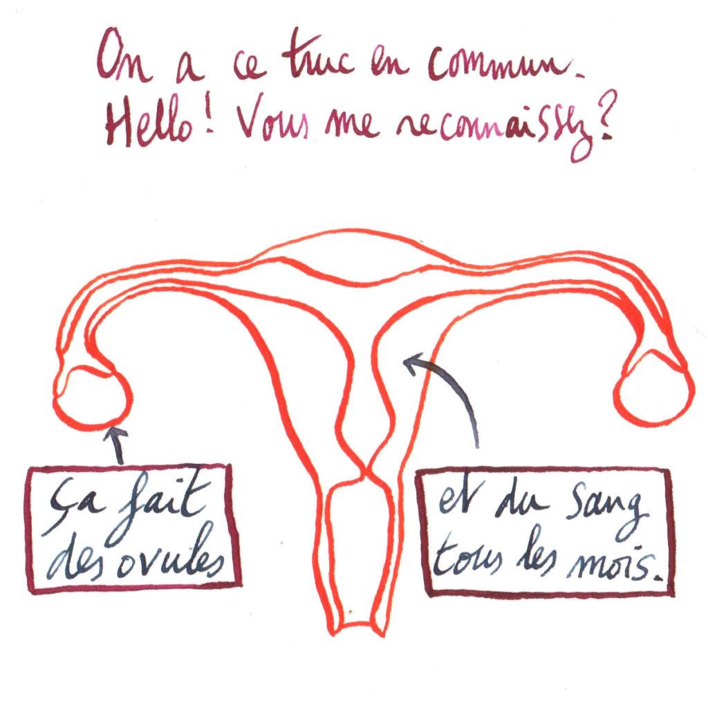 On a ce truc en commun, ça fait des ovules et du sang tous les mois.